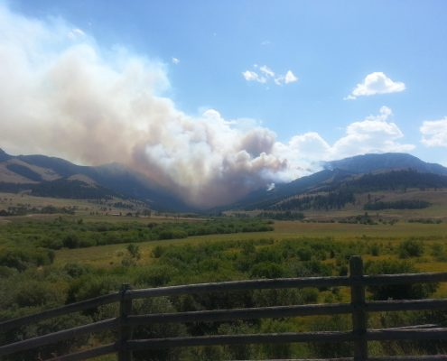Miner Paradise Complex Fire
